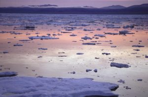 Факты о Чукотском море