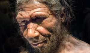 Факты о древних людях