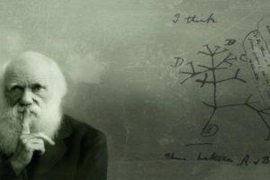 Факты о Дарвине
