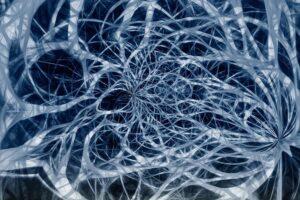 Факты о нервной системе