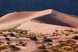 Факты о пустынях