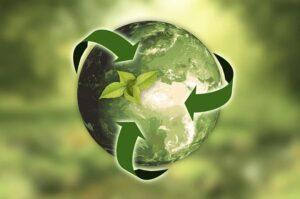 Факты об экологии