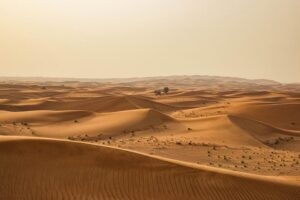 Факты о пустыне Сахара