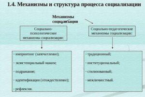 Основные механизмы социализации