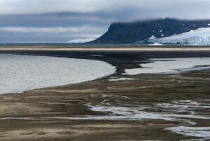 Природная зона арктических пустынь