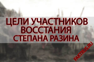 Цели участников восстания Степана Разина